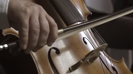 philharmonic : Professional musician playing cello on stage, close up