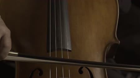 виолончель : Professional musician playing cello on stage, close up