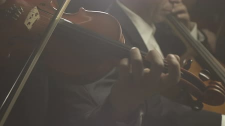 string instrument : Symphonic orchestra playing classical music concert on stage, teamwork and entertainment concept Stock Footage