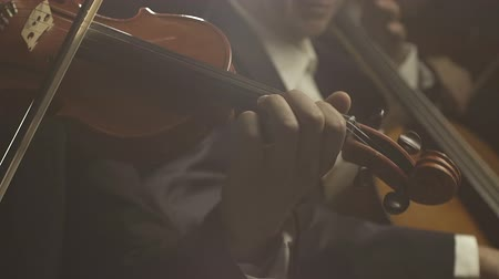 cellist : Symphonic orchestra playing classical music concert on stage, teamwork and entertainment concept Stock Footage