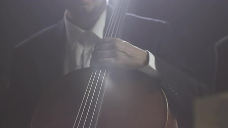 cellist : Professional philharmonic orchestra playing together on stage, they are sitting and waiting to start Stock Footage