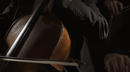 philharmonic : Professional philharmonic orchestra playing on stage, a cellist and a violinist are performing together Stock Footage