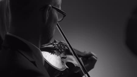 philharmonic : Professional violinist performing on stage at classical music concert