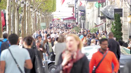 europe population : A very crowded street in Paris center in a summer day Stock Footage