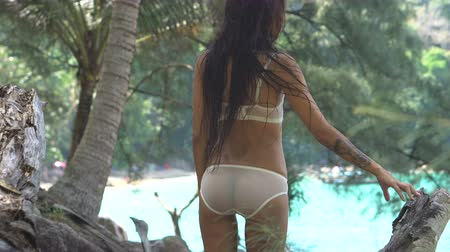 spodní prádlo : Back view of sensual young brunette beauty wearing mint underwear with wet hair, looking like amazon woman, standing over tropical green jungle background