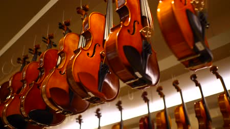 hang : Bottom view of musical instrument display with violins hanging from the ceiling