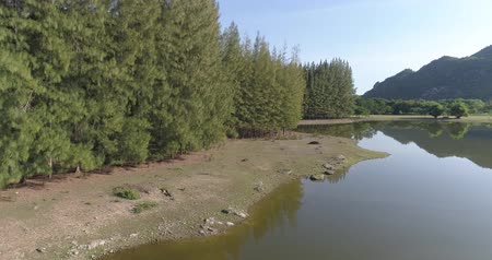 водный путь : Beautiful natural scenery of river in Asia tropical green forest with mountains in background, aerial view drone shot - video in slow motion