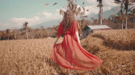 znicz : Back view of beautiful young woman in red transparent dress running along the rice field - video in slow motion Wideo