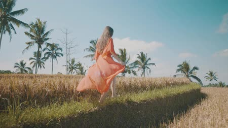 znicz : Beautiful young woman in red transparent dress walking along the rice field - video in slow motion