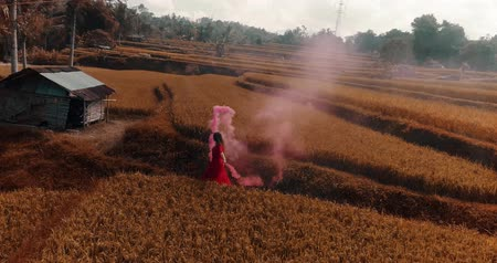 znicz : Aerial drone view of beautiful young woman in red transparent dress dancing with colored smoke in rice field - colored video in slow motion