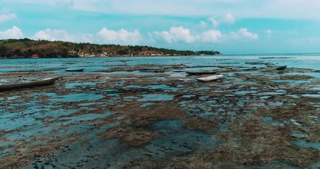 fly fishing : Aerial drone view of low tide on the beach of Nusa Lembongan island, Bali, Indonesia Stock Footage