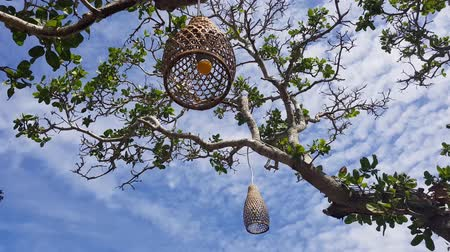 bamboo basket : Coops lamps hanging decorations on the tree over blue summer sky background Stock Footage