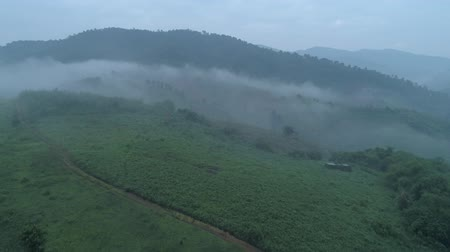 zumbido : Aerial drone view of Chiang Rai beautiful mountain fields landscape during foggy morning, Thailand Vídeos