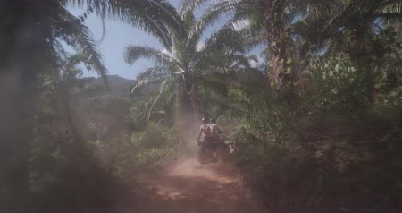 quad bike : Driving behind quad bike, ATV drivers through tropical jungle forest during sunny summer day
