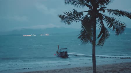 restless : Coconut palm tree in the wind and boat in the sea over dark cloudy sky background. Cinematic dramatic footage of palm tree and boat in the restless sea before rain