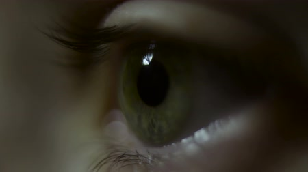 olhos verdes : womans eye close up