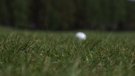 delikleri : The stick on the Golf ball Stok Video