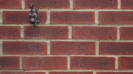parede de tijolos : Outside tap being turned on then off against a red brick wall