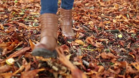 kurutulmuş : Young woman walking through dried leaves on a autumn day in slow motion kicking up the leaves Stok Video