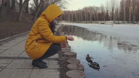 couture : Young woman feeds the ducks around the lake in winter