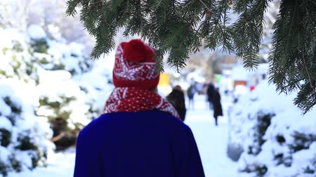 cobalt : Back view of woman strolling in winter park Stock Footage