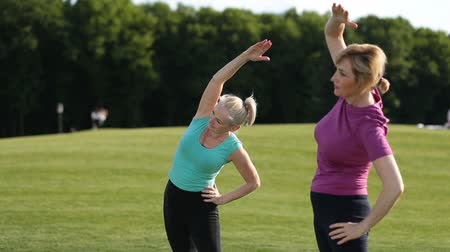 esneme : Sporty women doing stretching exercises in park Stok Video