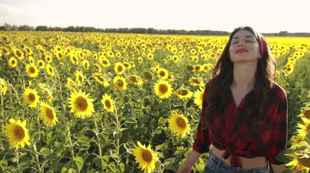 pléd : Sensual brunette girl walking in sunflower field