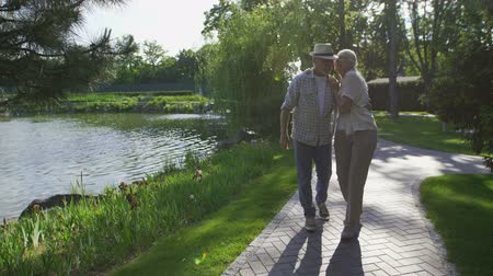 darling : Beautiful senior couple walking in summer park Stock Footage