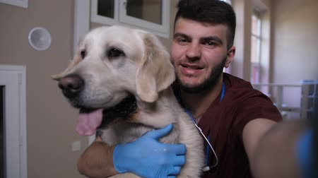 self examination : Vet making selfie on phone with dog at clinic Stock Footage