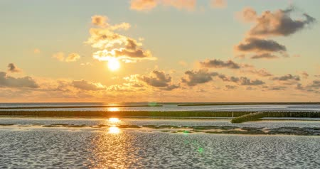 schleswig : beautiful, colorful mudflats of the North Sea at Suedwesthoern for sunset Timelapse
