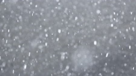 zimní : Slow motion of many snow flakes falling down in winter