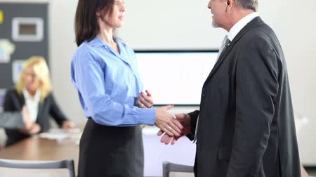 рукопожатие : Two business people doing handshake for congratulation in the office (Full HD)