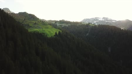 Aerial tracking shot of mountain forest landscape in Rh?ne-Alpes region of France (HD)