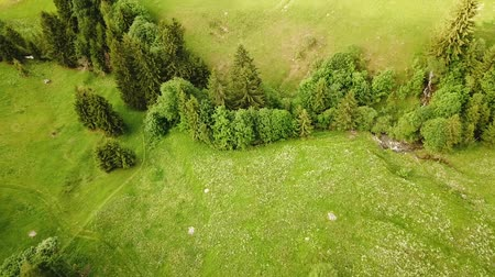 Cinematic aerial shot of creek running through meadows in the Rhone-Alpes region of France (HD)