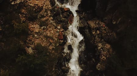 Tilt shot of wild water stream running through rocks in Rhône-Alpes mountain region of France (HD) Stockvideo