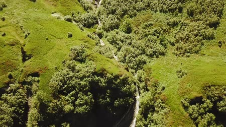 Aerial tracking shot of wild river with waterfall in forest in Rh?ne-Alpes region of France (HD)