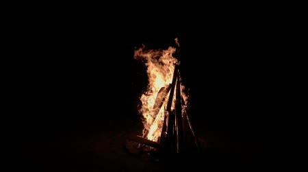 Hot fire on campfire or bonfire in a black night (Full HD)