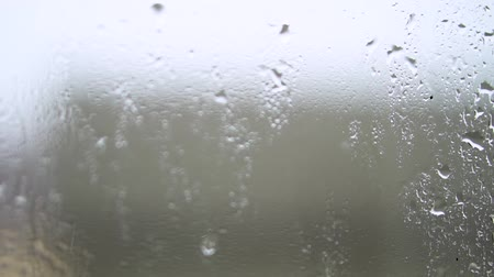 yarı saydam : Raindrops on window with green tree in background. Spring thunderstorm in the city. Stock video