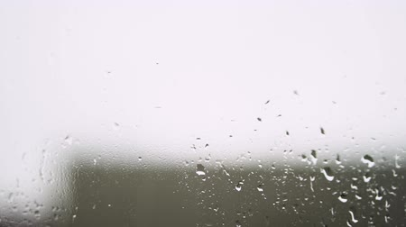 prysznic : Raindrops on window with green tree in background. Spring thunderstorm in the city. Stock video