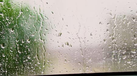 Raindrops on window with green tree in background. Spring thunderstorm in the city. Stock video