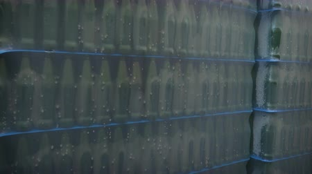 fermenting : Packed stack of bottles of beer in factory territory