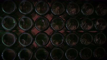 hops : row of flickering empty beer bottles Stock Footage