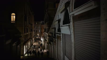 Street view with realto bridge in Venice at night