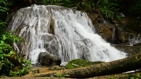 deep forest : waterfall in thai national park. In the deep forest on mountain