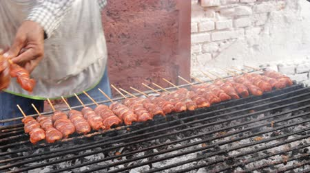 grelha : Grilled chicken skewers on a hot stove. Vídeos