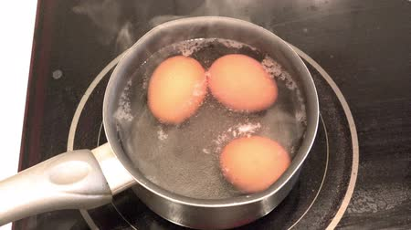 conductivity : Chicken eggs are cooked in a pan on an electric stove