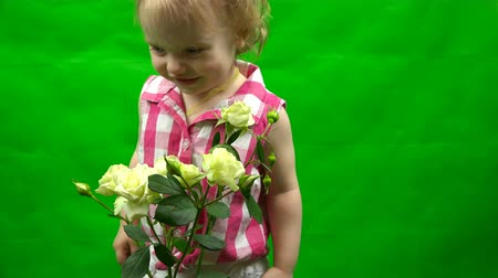 hromakey : little girl smelling a white rose on a green background.