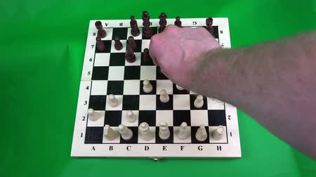 rook : White pawn strikes a dark pawn, and the horse chops a white pawn.