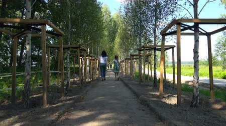 dinlenme : a girl and her mother are walking along the alley of young birch trees.