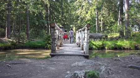 looking distance : tourists pass through a wooden bridge over the stream. Stock Footage